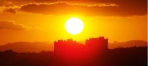В поисках солнца
